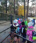 2019.g. oktobris. 1.b kl. Profesiju daudzveidība zoodārzā